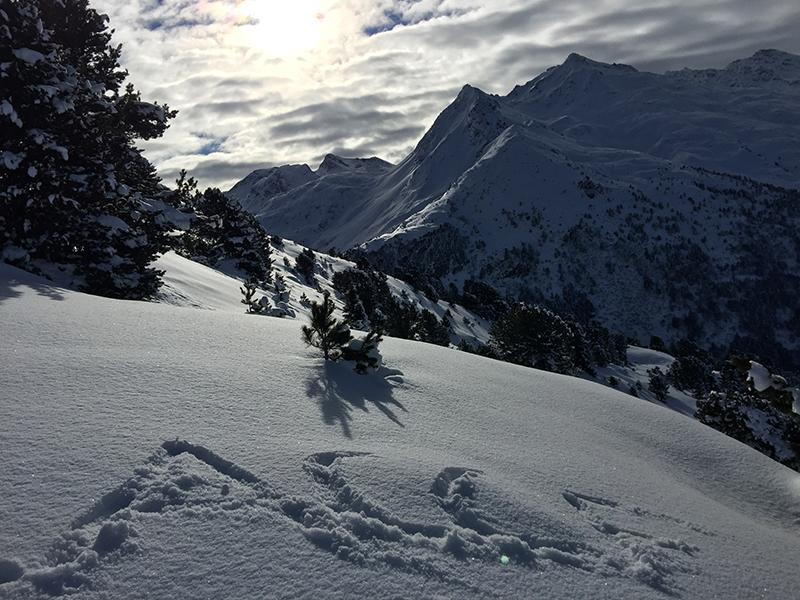 snow-accf